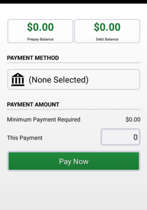 Snap Energy Latino Mobile App Make A Payment